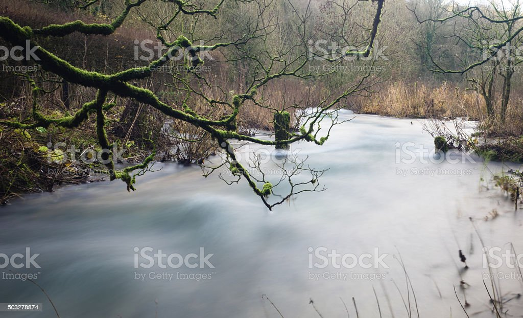 Flooding river stock photo