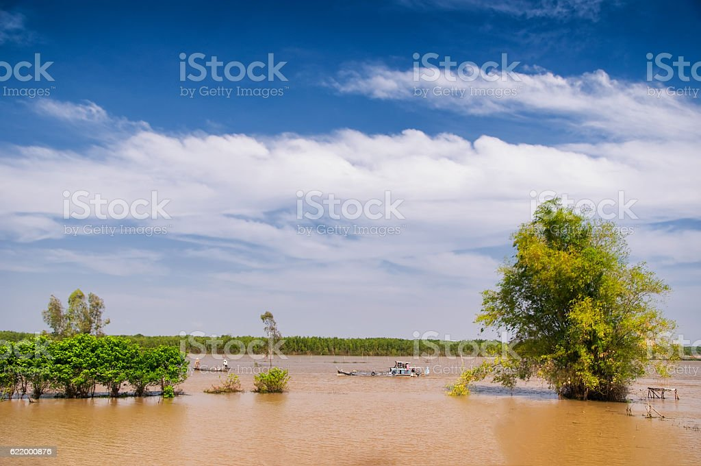 Flooding season in Mekong Delta, Vietnam stock photo