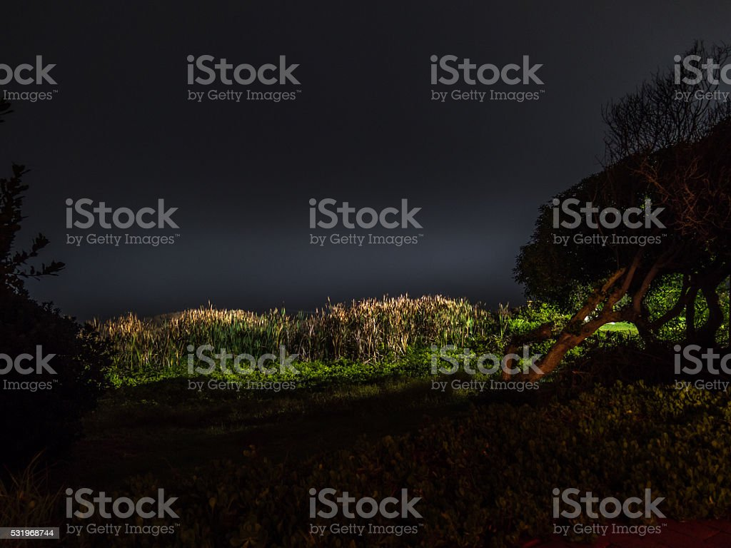 Floodlight stock photo