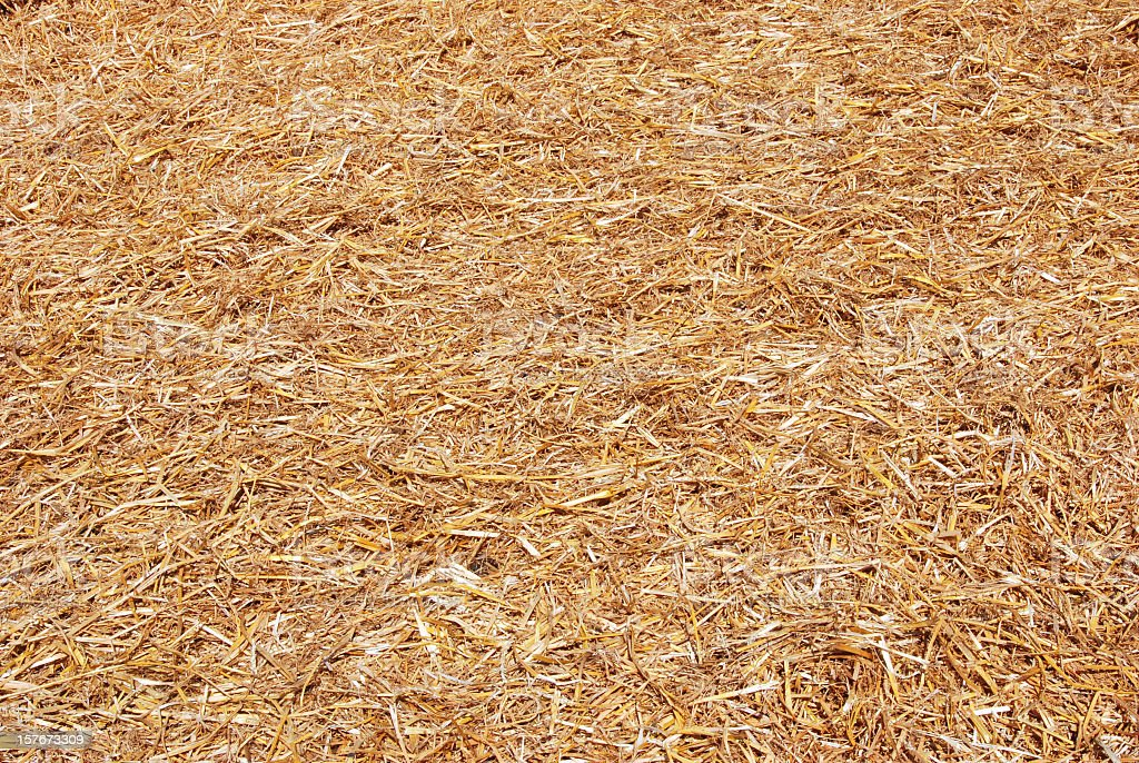Floor covered in light brown straw stock photo
