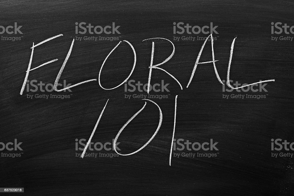 Floral 101 On A Blackboard stock photo
