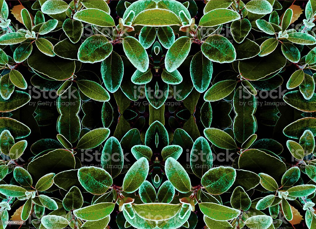 Floral abstract kaleidoscope royalty-free stock photo