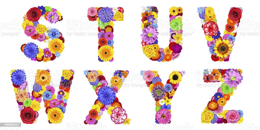 Floral Alphabet Isolated on White - Letters STUVWXYZ royalty-free stock photo