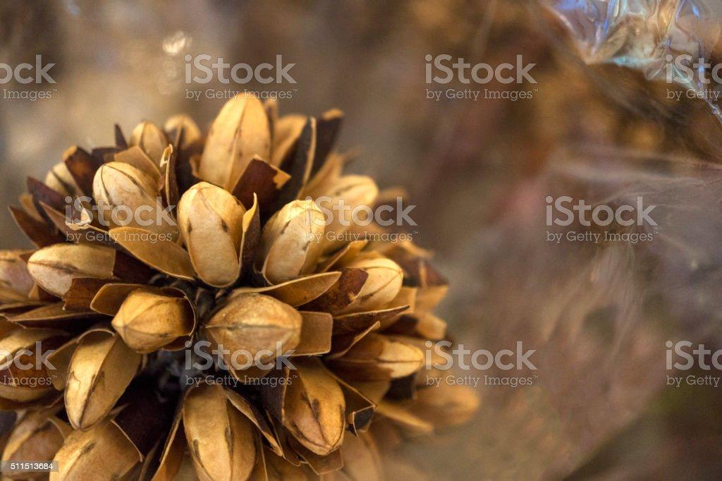 floral arrangement stock photo
