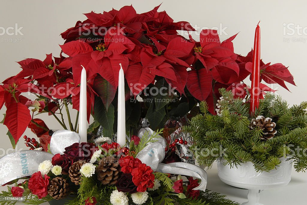 Floral Arrangement with Poinsettias and Candles royalty-free stock photo
