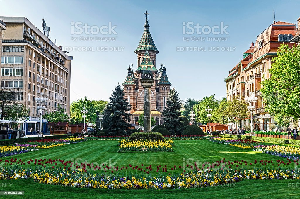 Floral arrangements in Victory Square, Timisoara stock photo