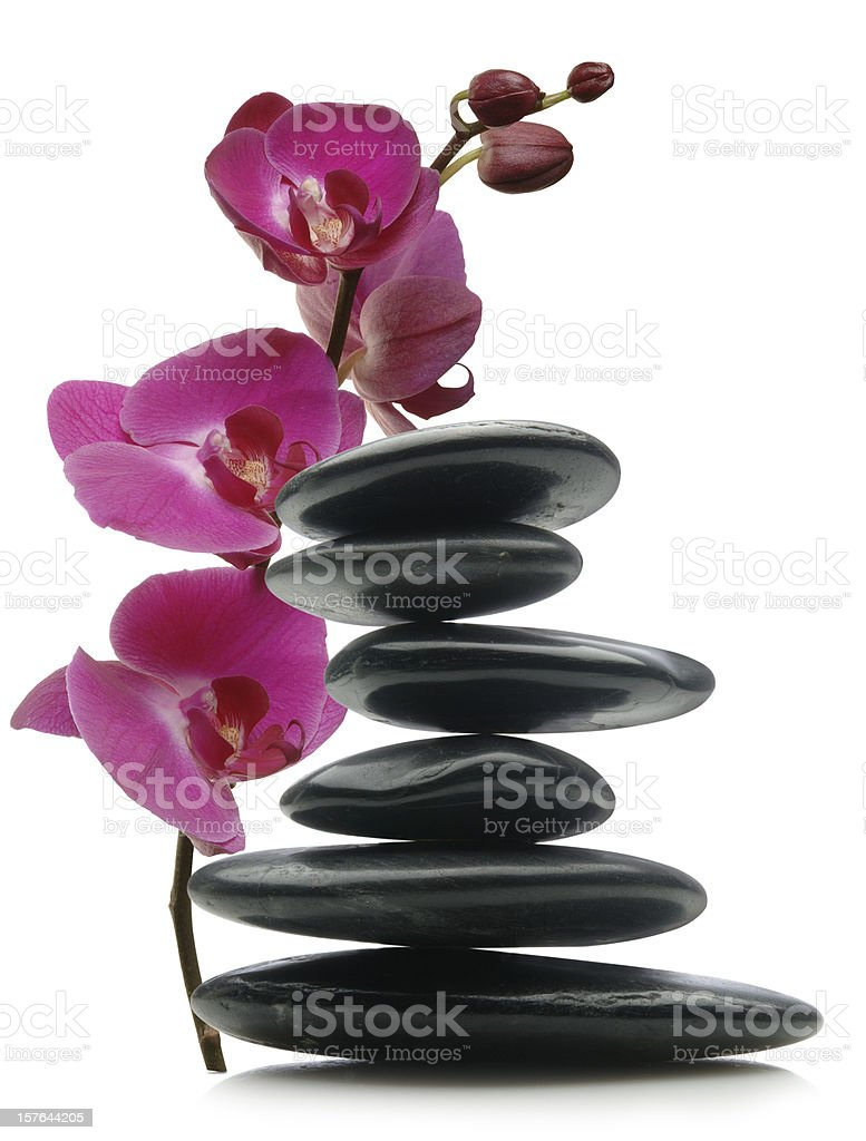 Floral Balance royalty-free stock photo