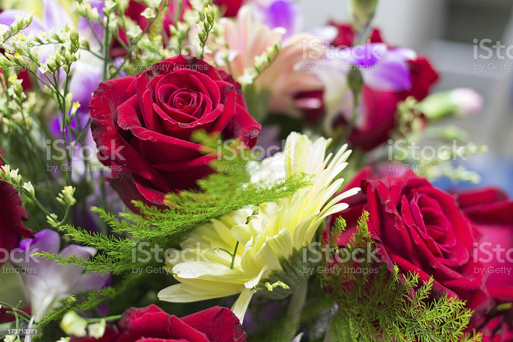Floral bouquet of orchids and rose stock photo