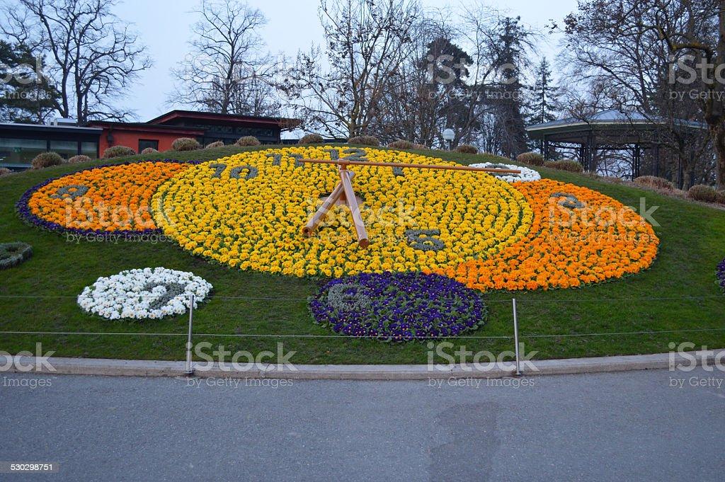 Reloj Floral Ginebra foto de stock libre de derechos