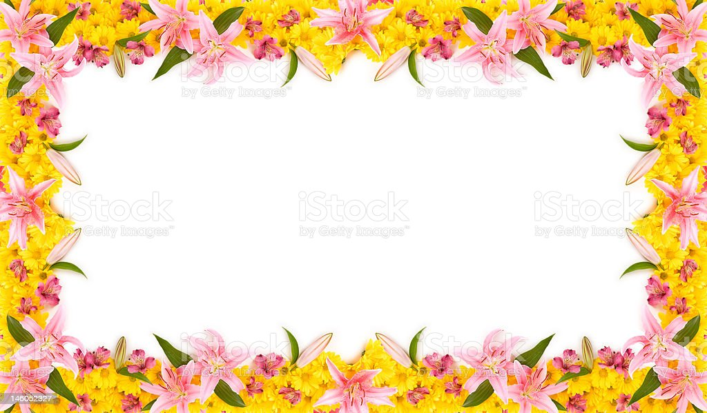 Floral Frame royalty-free stock photo