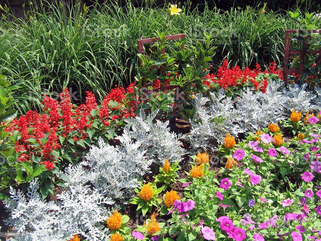 Floral Garden stock photo