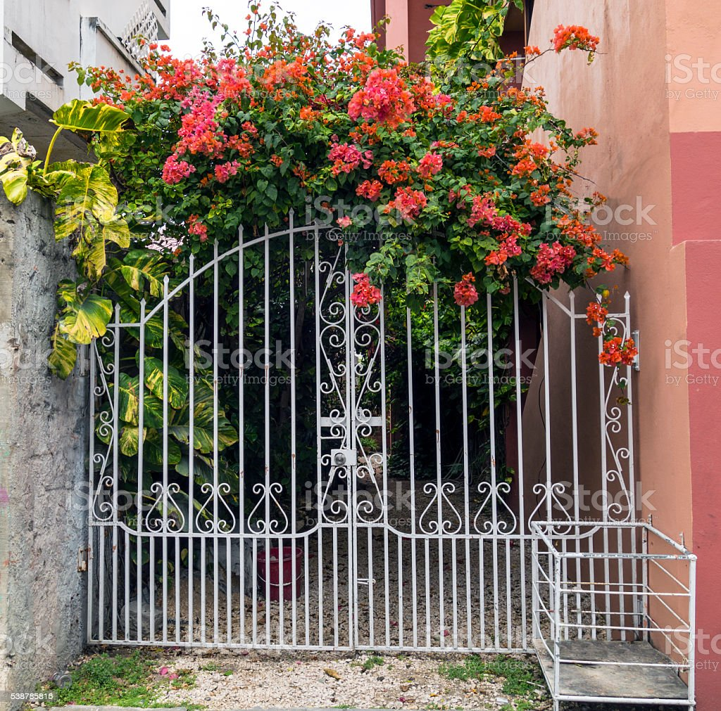 Floral gate stock photo