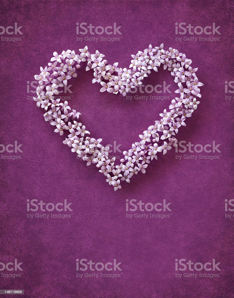 Floral heart shape arrangement against purple background royalty-free stock photo