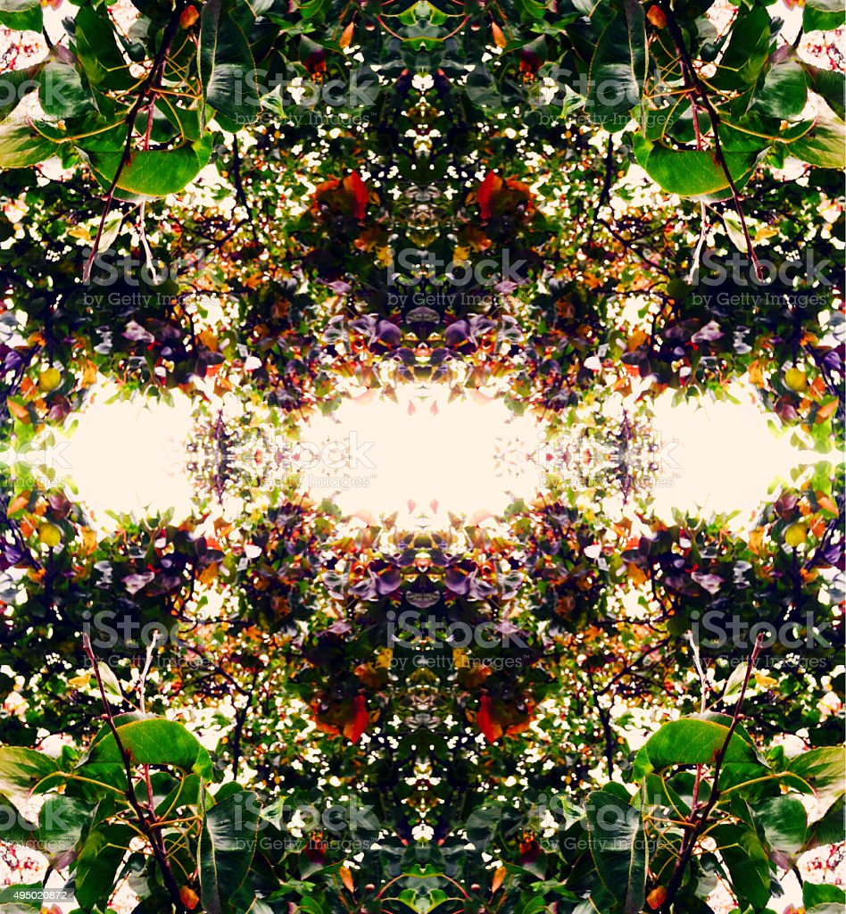 Floral kaleidoscope abstract background stock photo