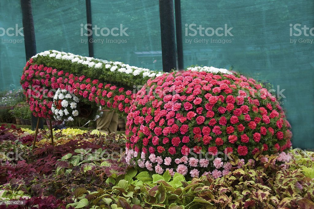Floral Musical Instrument stock photo