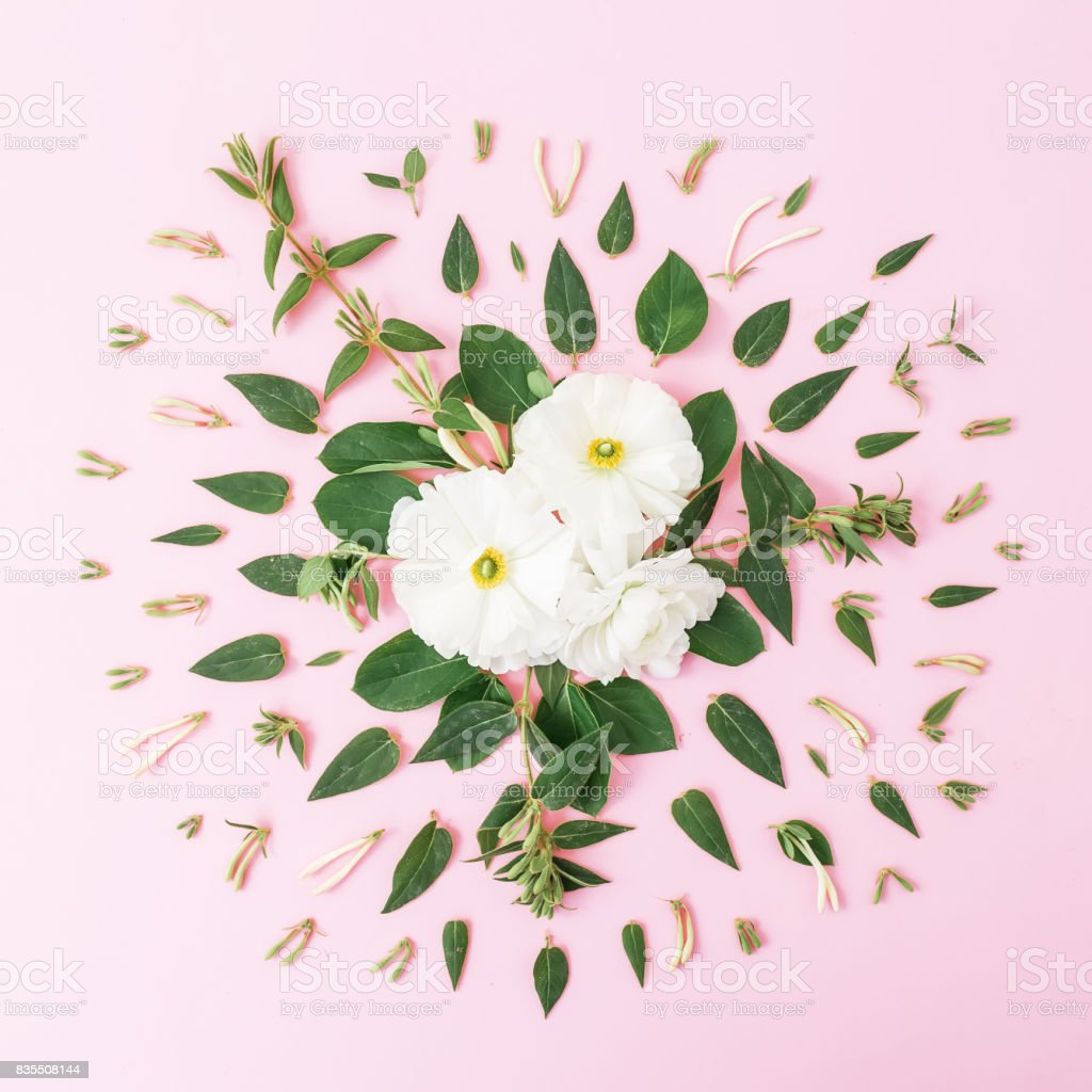 Floral pattern of white flowers with leaves on pink background. Flat lay, top view. stock photo