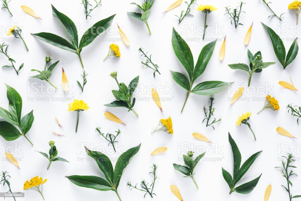 Floral Pattern On White Background stock photo