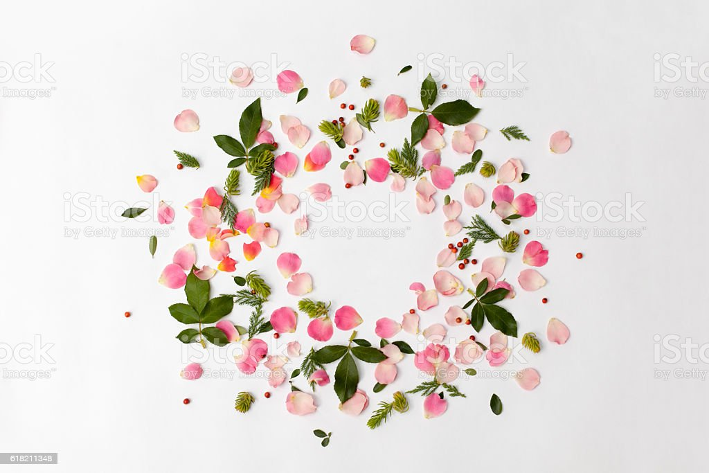Floral round frame with rose petals and leaves on white stock photo