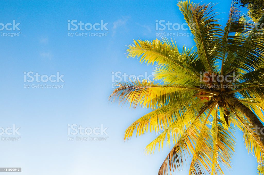13, Floride photo libre de droits