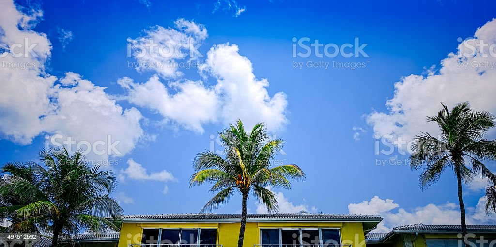 Florida beach palmtrees and cloudy blue sky.  Florida USA stock photo