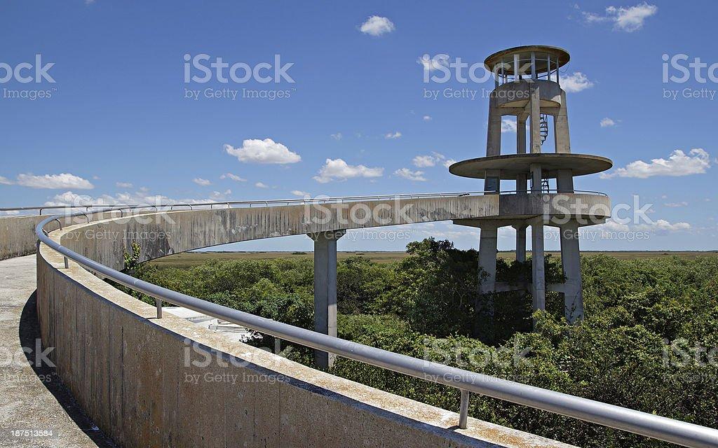 Florida Everglades Observation Tower stock photo