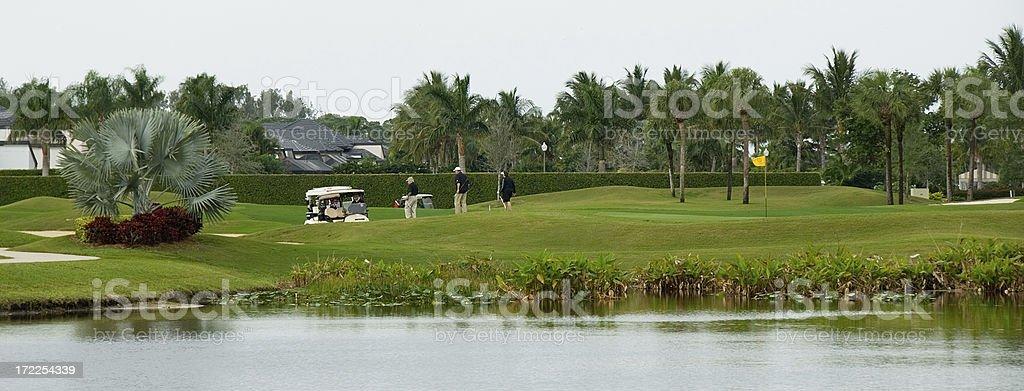 Florida Golfing royalty-free stock photo
