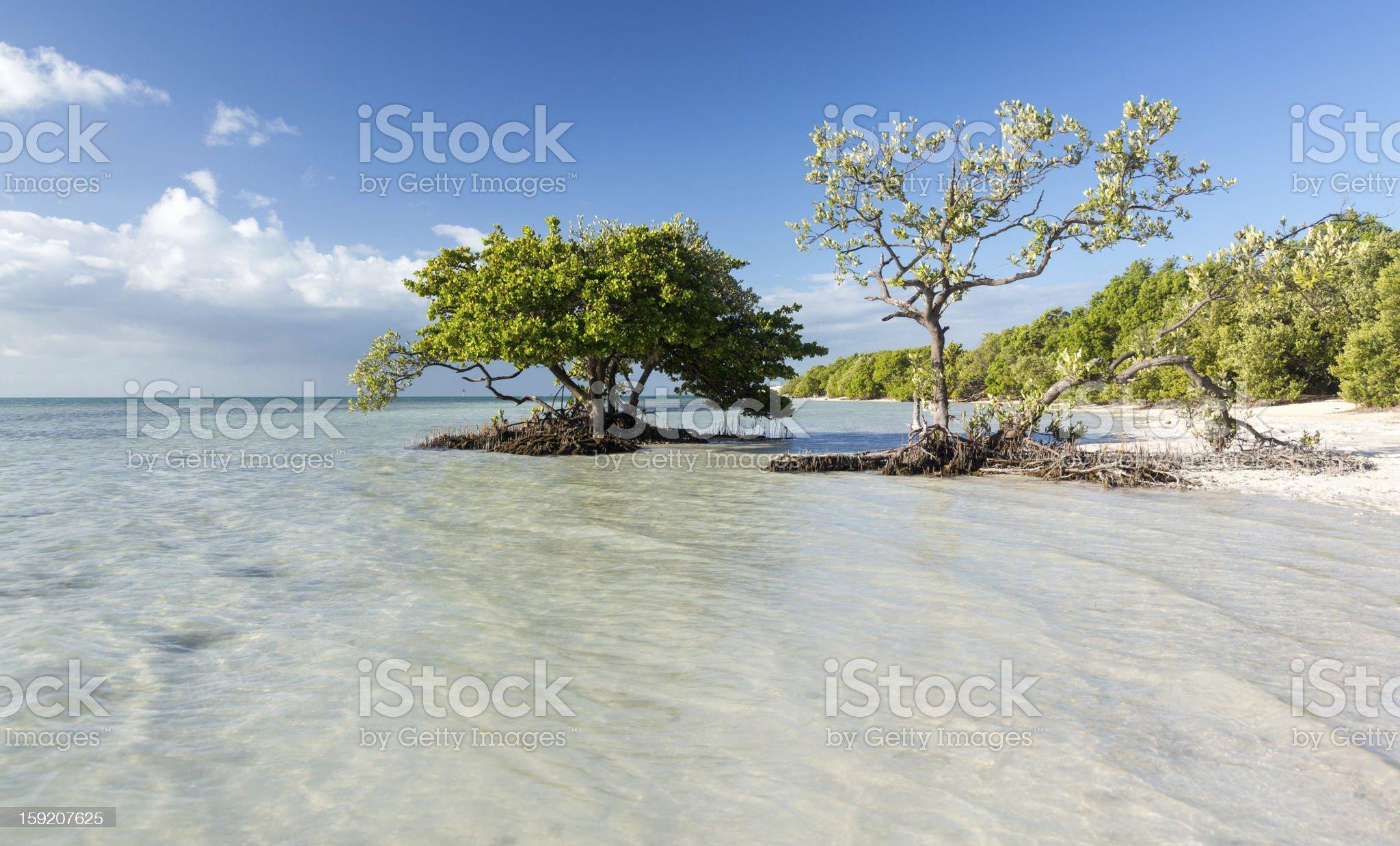 Florida Keys Anne's Beach royalty-free stock photo