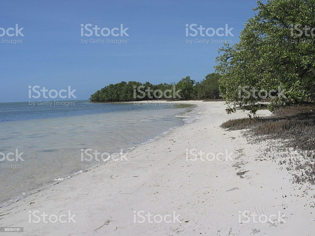 Florida Keys Beach royalty-free stock photo