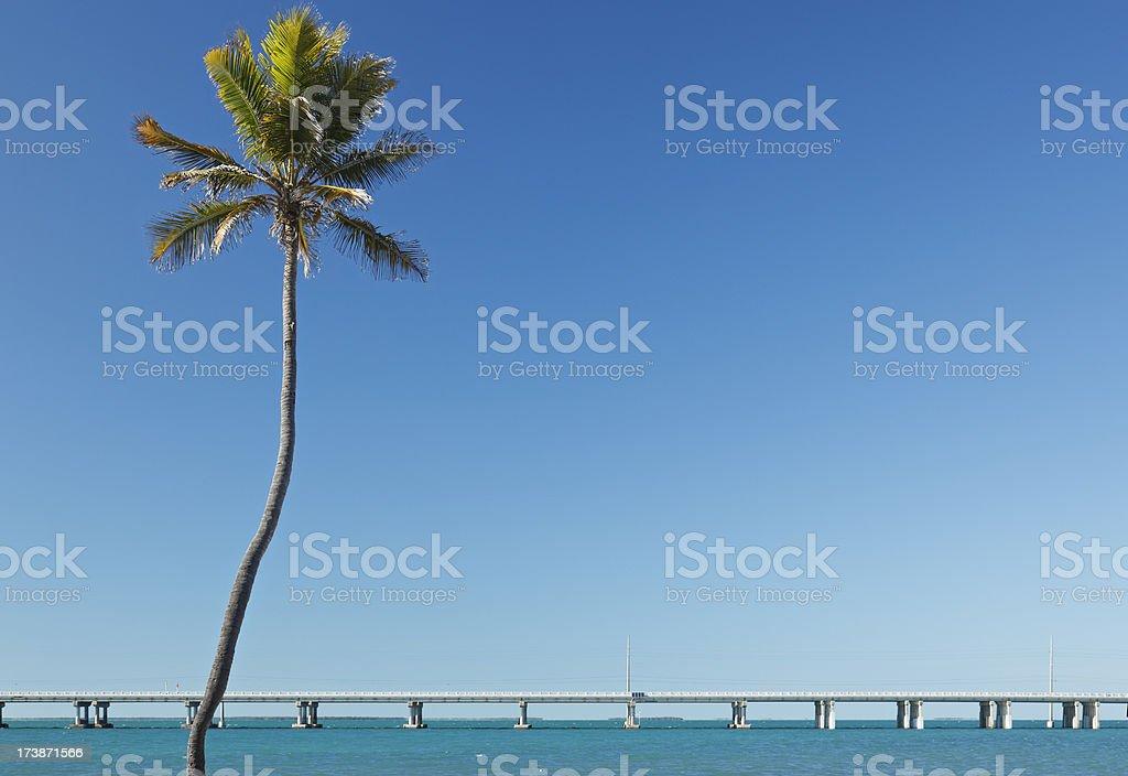 Florida Keys Landscape stock photo
