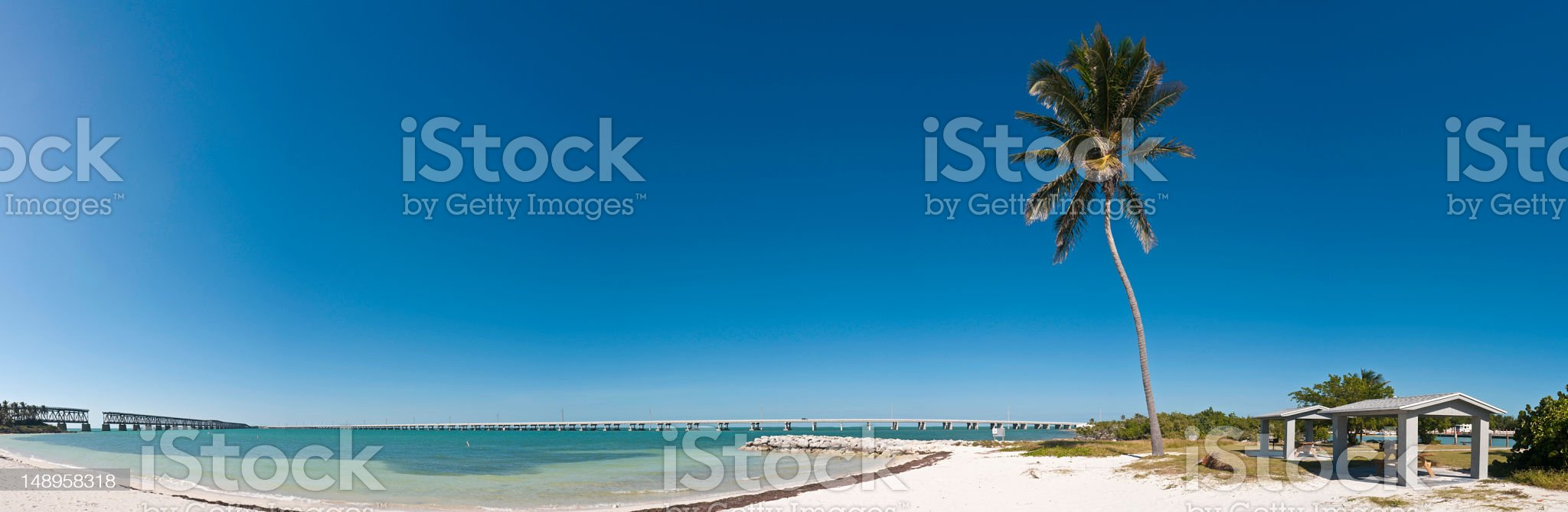 Florida Keys palm tree white sands royalty-free stock photo