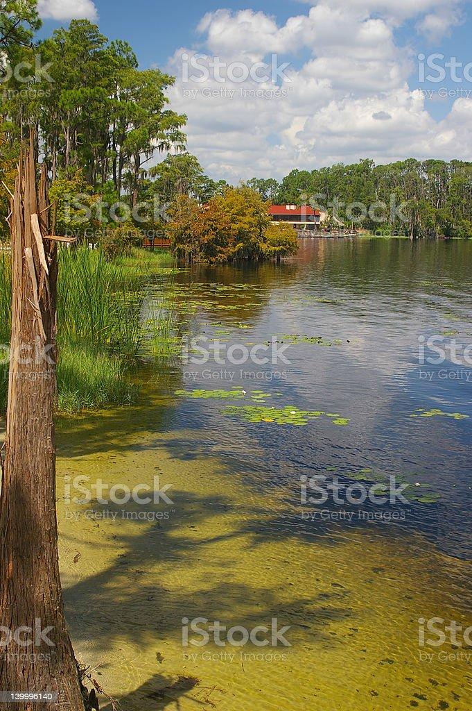 Lago de Florida foto de stock libre de derechos