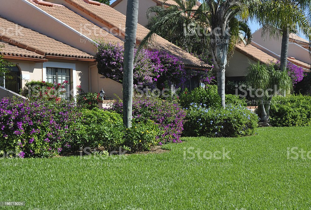 Florida Landscaping royalty-free stock photo