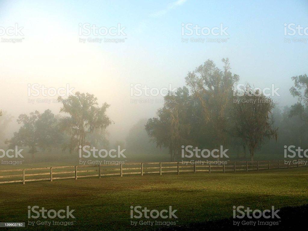 Florida morning stock photo
