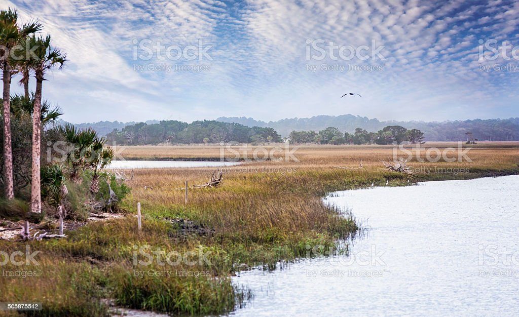 Florida Salt Marshes and Wildlife Preserve stock photo