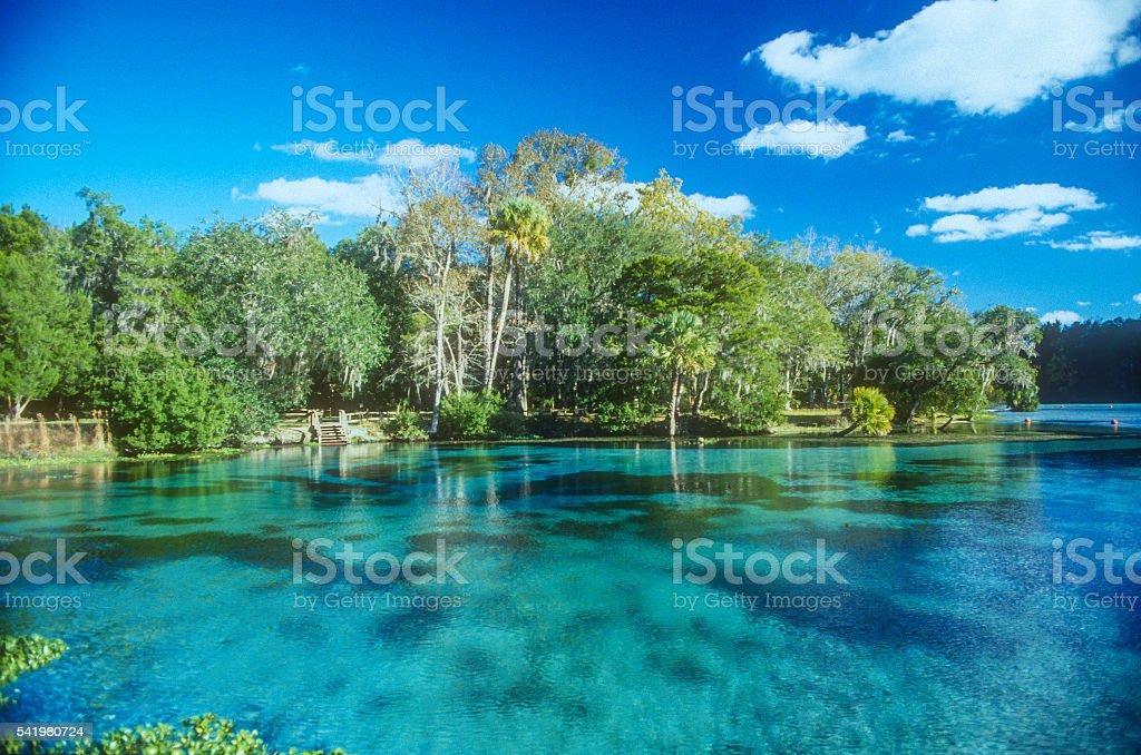 Florida Spring stock photo