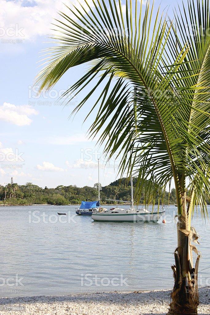 Florida sun stock photo