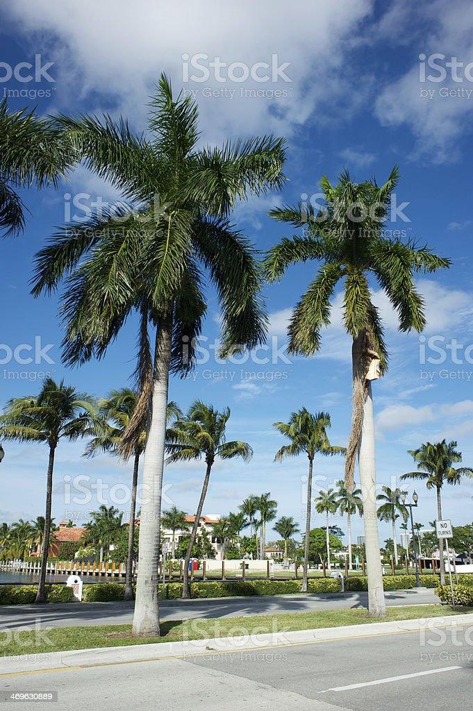 Florida USA stock photo
