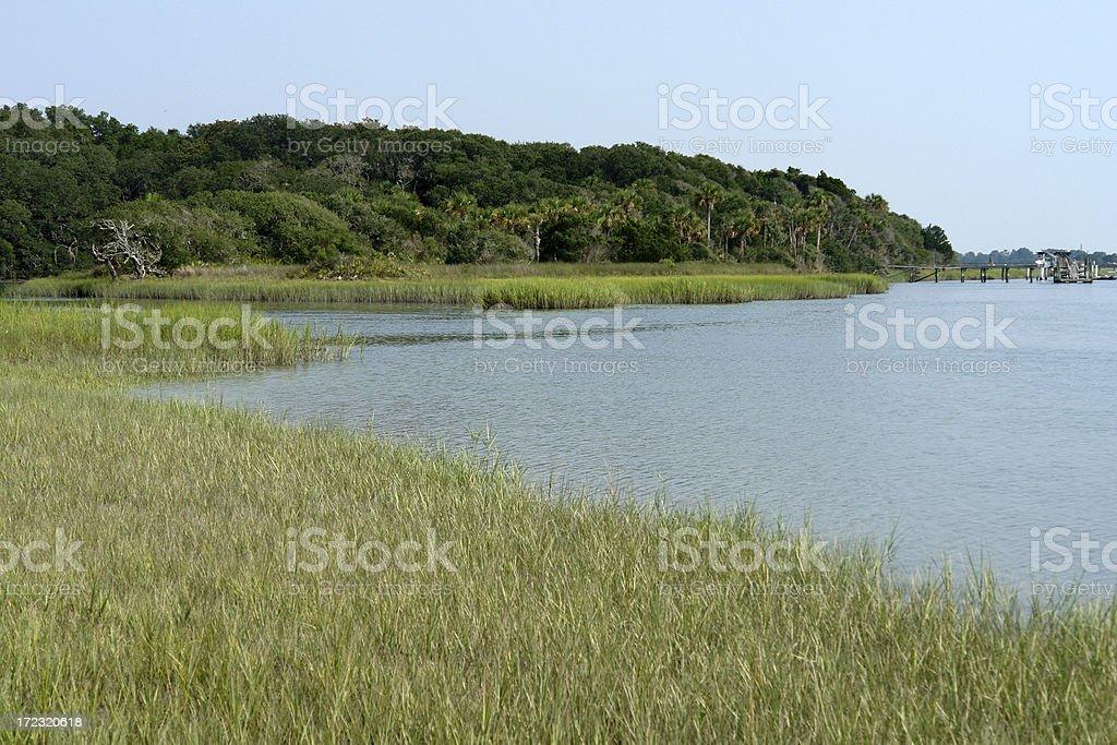 Florida Wetlands royalty-free stock photo