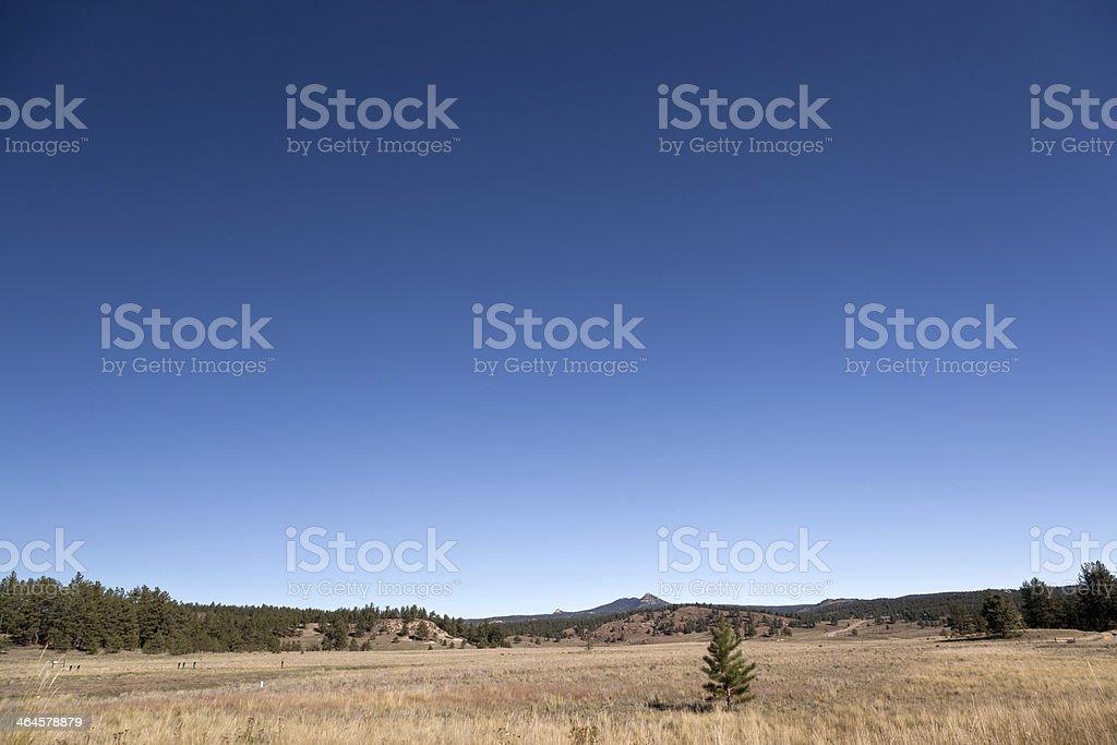 florissant national monument colorado stock photo