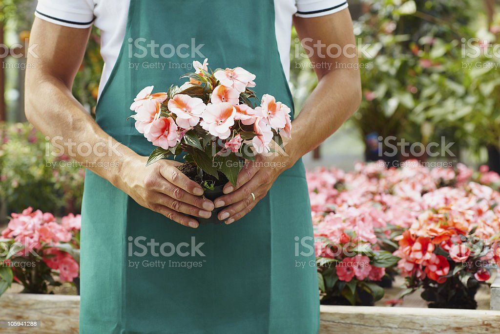 florist royalty-free stock photo