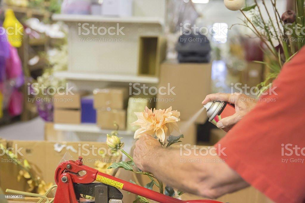 Florist: Silk Flower Designer spraying cleaner royalty-free stock photo