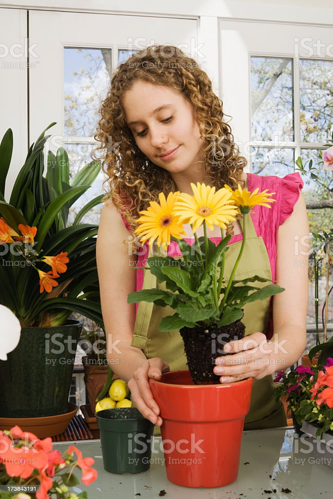 Florist Working with Plants stock photo
