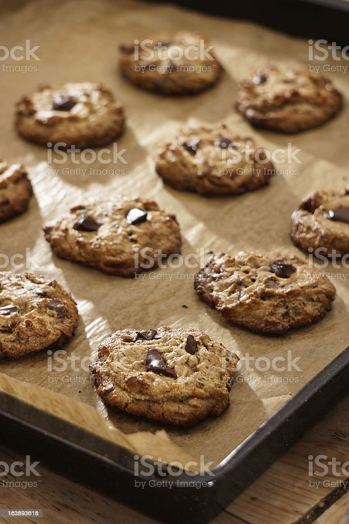 Flourless Peanut Butter Chocolate Chip Cookies On Baking Sheet royalty-free stock photo