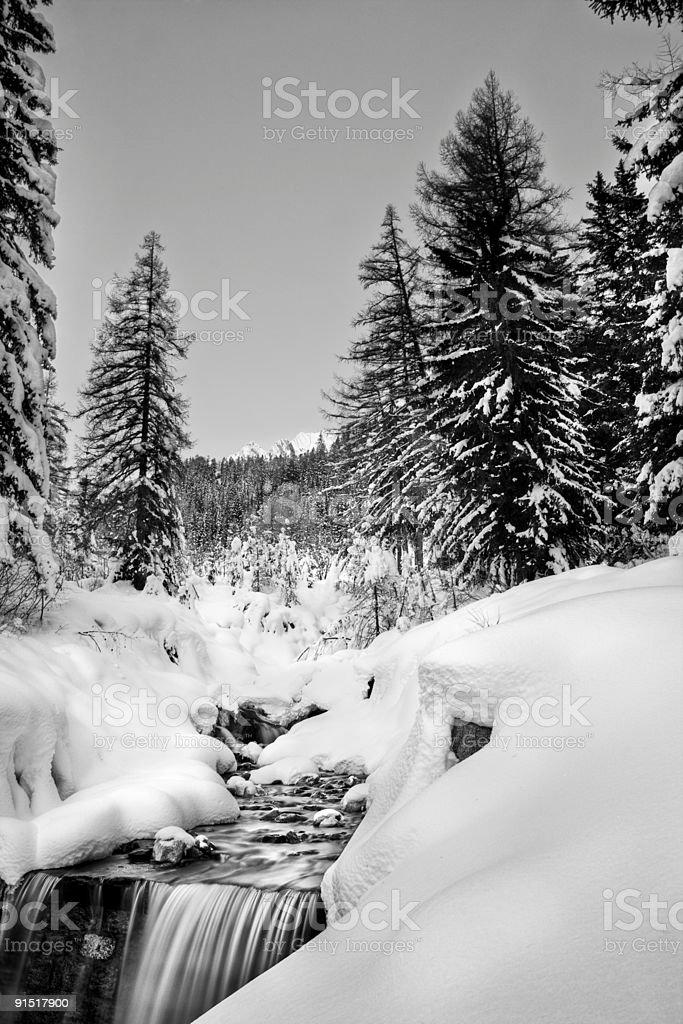 Flow through the snow royalty-free stock photo