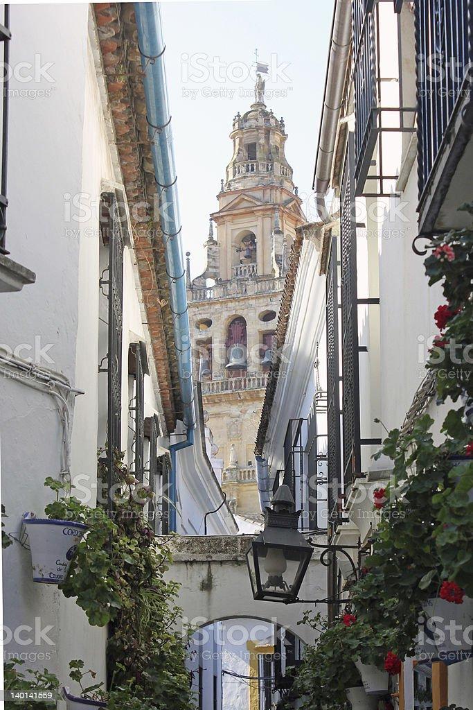 Flower Alley in Cordoba stock photo