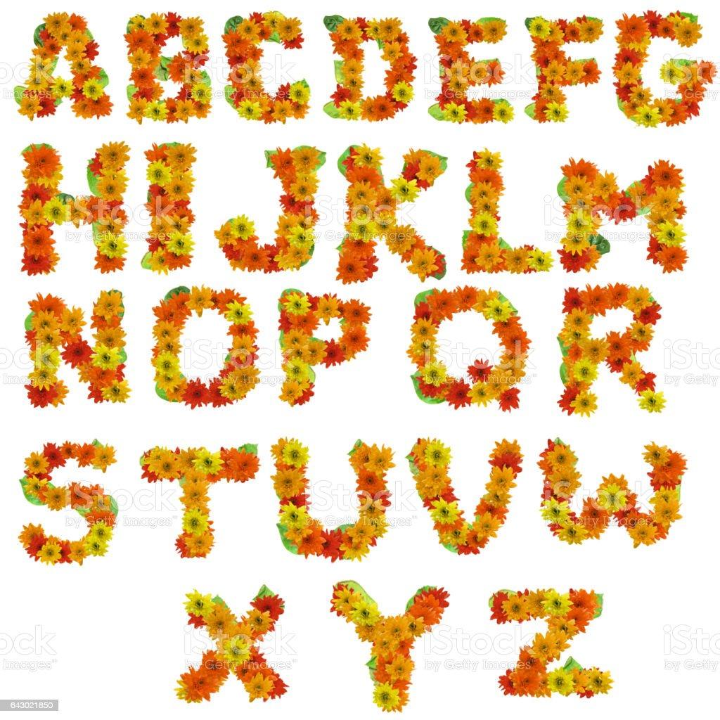 flower alphabet hot tone isolated on white background. stock photo
