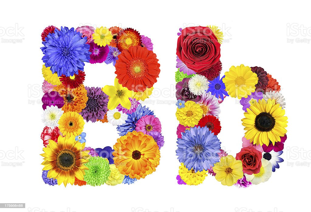 Flower Alphabet Isolated on White - Letter B royalty-free stock photo