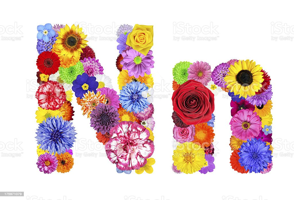 Flower Alphabet Isolated on White - Letter N royalty-free stock photo