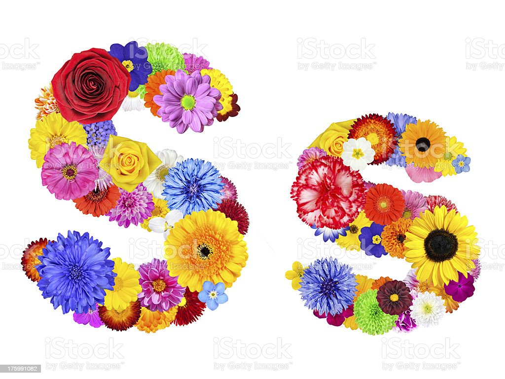 Flower Alphabet Isolated on White - Letter S royalty-free stock photo