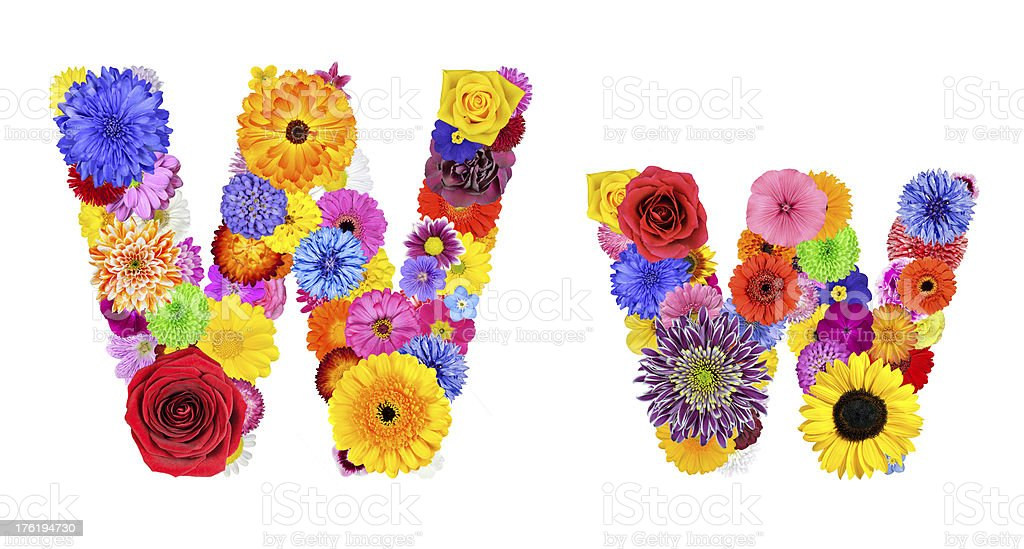 Flower Alphabet Isolated on White - Letter W royalty-free stock photo